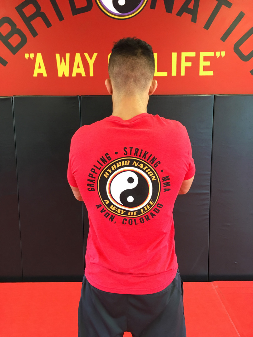 "Red ""Team Hybrid"" T-shirt back"