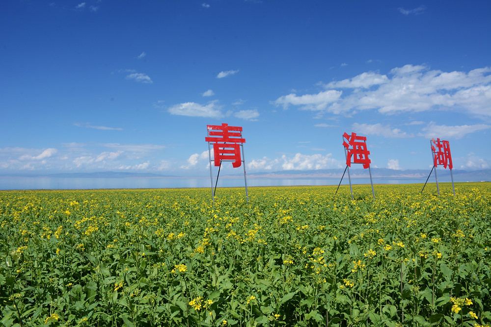 Image of Qinghai Lake