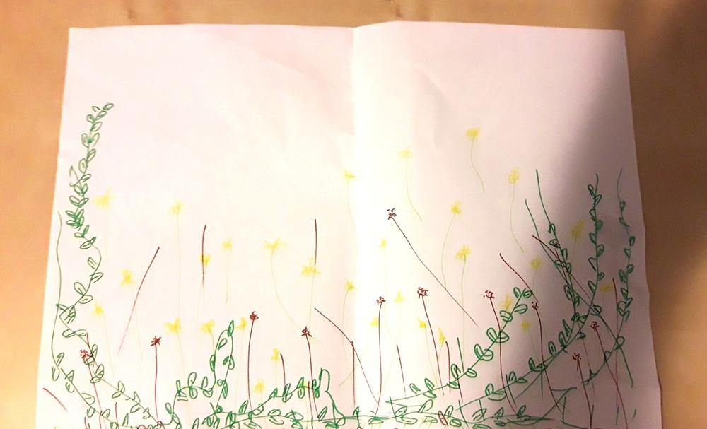 ציור - אלו הקושי שלי היה 'גינה'- איך הגינה הזו היתה ניראת