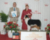 Wyatt's Royal Canin win photo.jpg