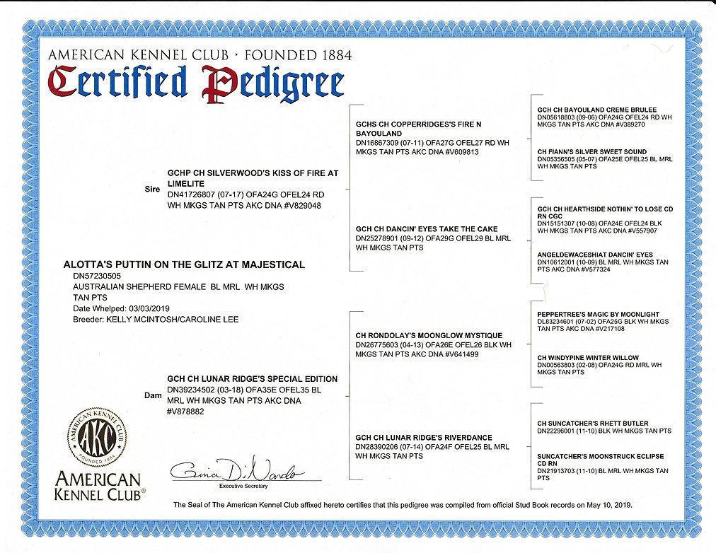 Tulee certified pedigree.jpg