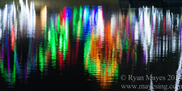 Zoolight Reflections