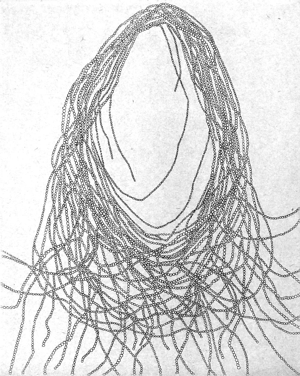 Portrait Chaine 1