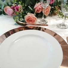 ROSE GOLD UNDERPLATES