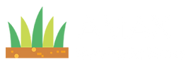 Amax Synthetic Grass
