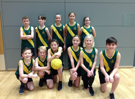 County Finals - Basketball