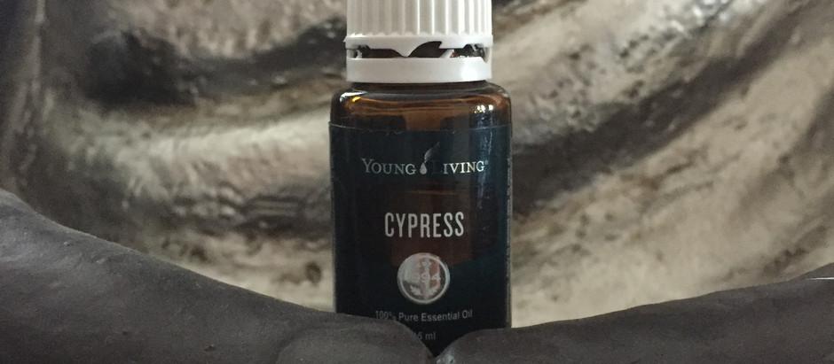 Aceite esencial de Ciprés para cerrar ciclo