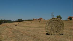 frans landschap.jpg