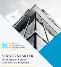 Strata Starter Owner.png