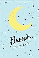 dream a little dream journal cover amazo