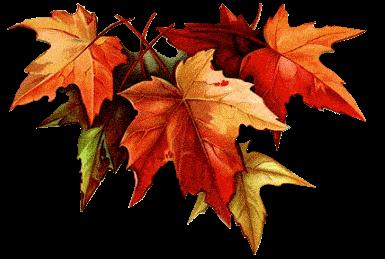 Un automne actif