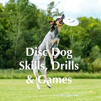 DiscDogSkillsDrillsandGames_1024x1024@2x