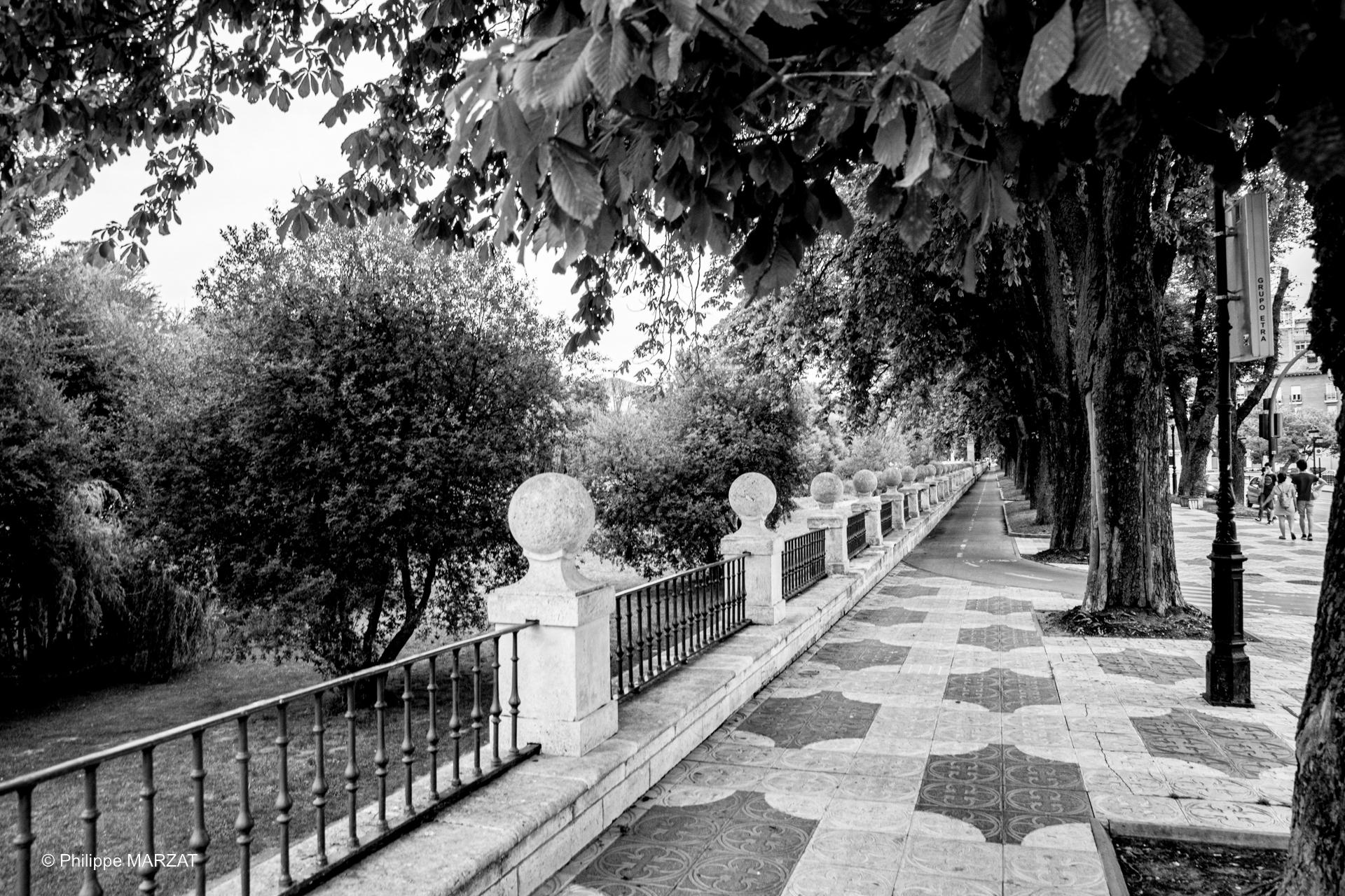 ©_PM__Burgos-00649