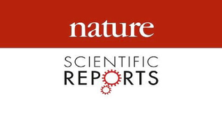 Under peer review at Nature Scientific Reports