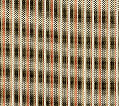 FS-011 Stripe Conch