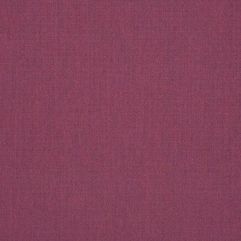 57002-0000 Canvas Iris