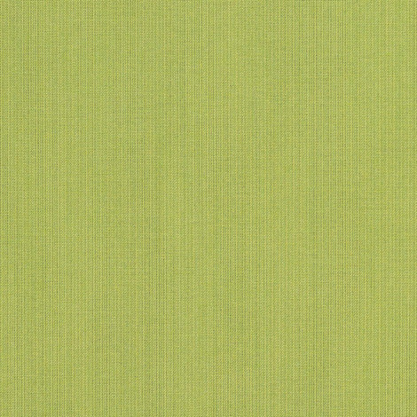 48023-0000 Spectrum Kiwi