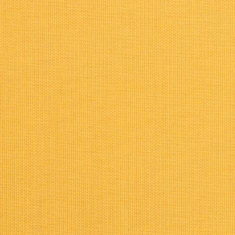 48024-0000 Spectrum Daffodil