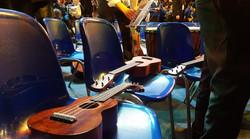 Royal Albert Hall 003