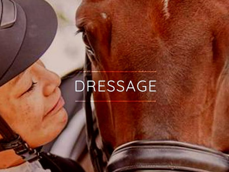 Audiovisability: Dressage