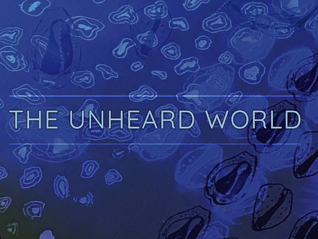 The Unheard World - Plans, Pictures, and Performances