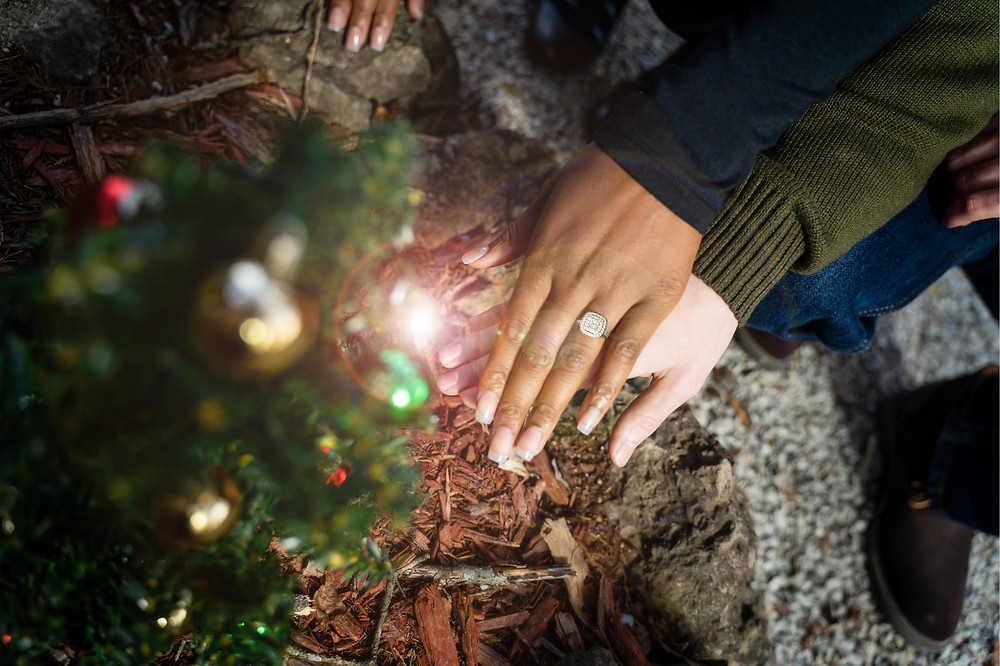 Christmas Engagement Photos in Branson