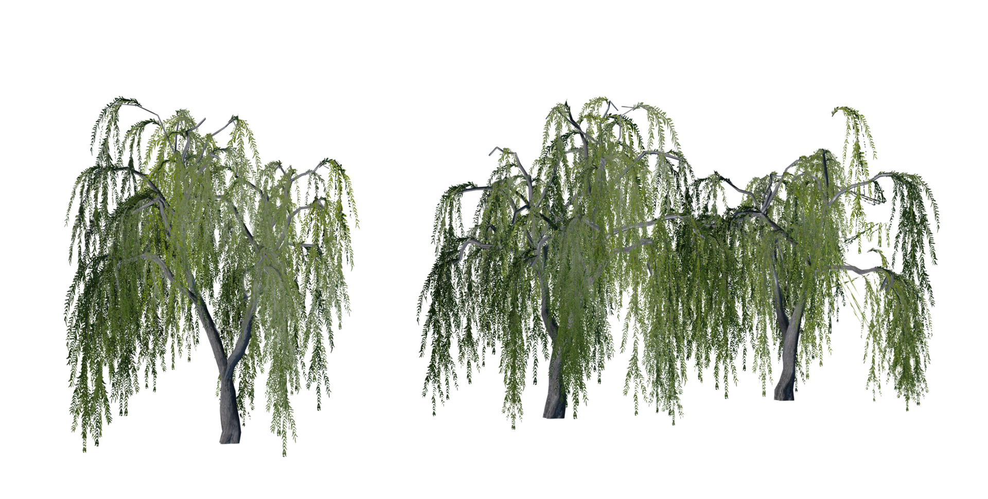 Trees Details-20.png