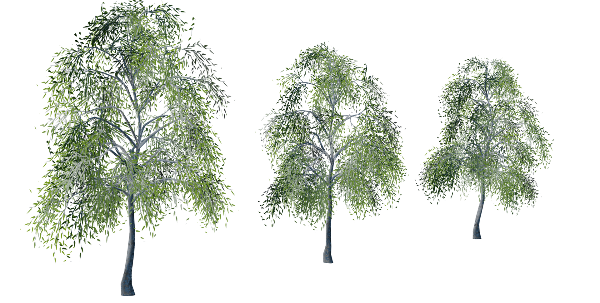 Trees Details-06.png