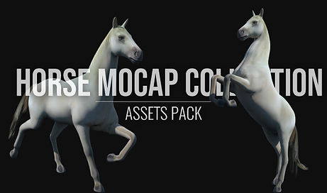 Horse-Mocap-Collection.jpg