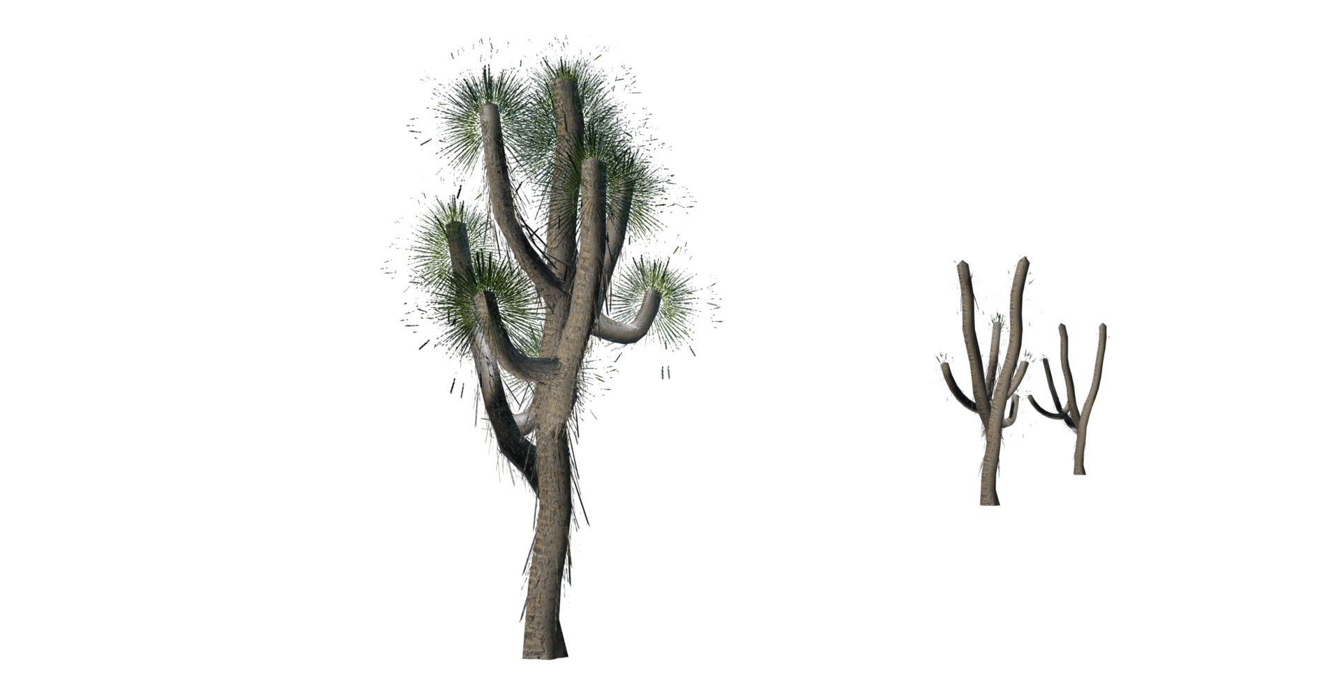 Trees Details-14.png