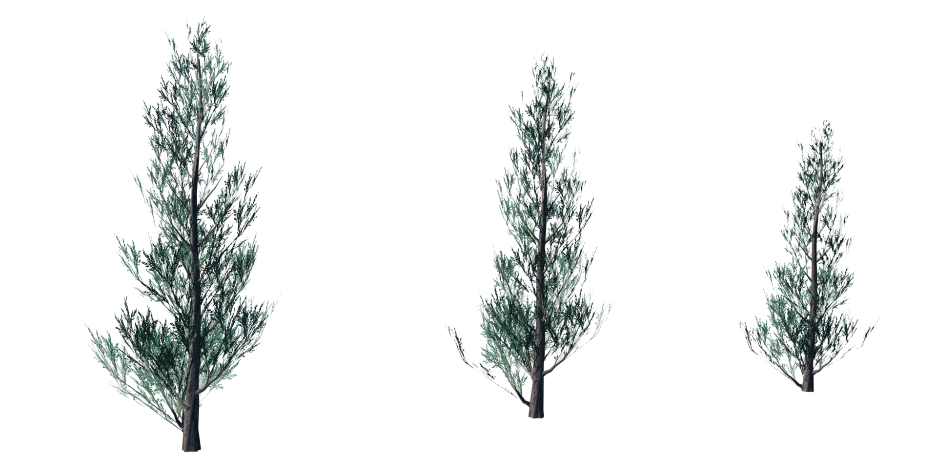 Trees Details-15.png