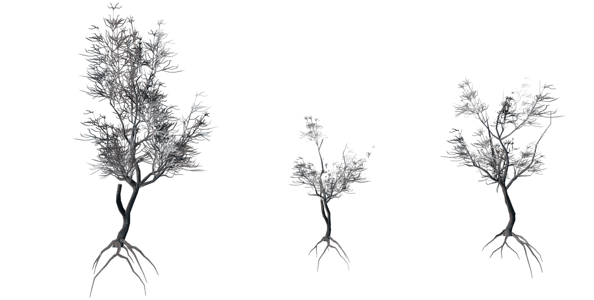 Trees Details-18.png
