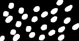 ponto branco.png