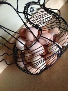 chicken-eggs-in-chicken-wire-frame-225x3
