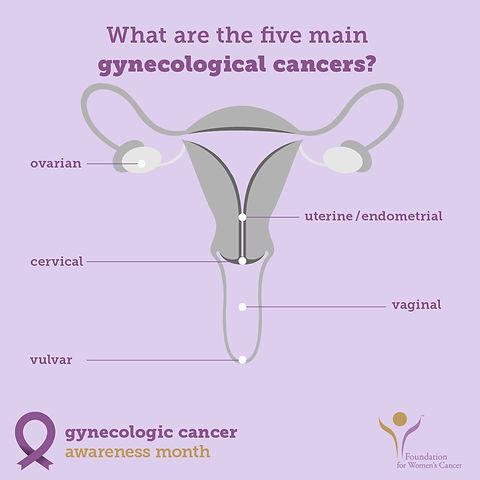gyncancer_5main-100 5 cancers.jpg