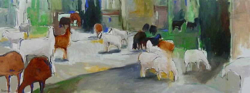 כבשים בשמרת