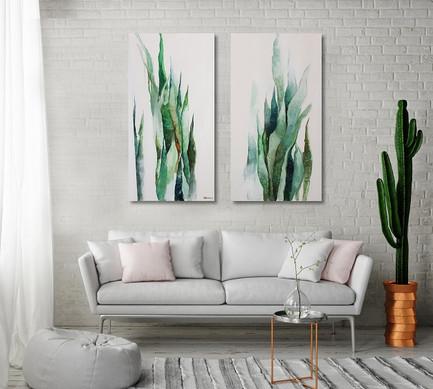 סנסיווריה 2 יחידות ציורים לסלון sold