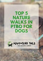 TOP 5 NATURE WALKS IN PETERBOROUGH.png