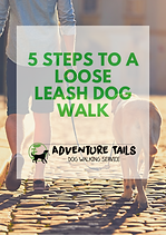 5 Tips to a Perfect Walk.png