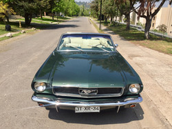 Ford Mustang (167)