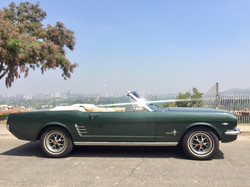 Ford Mustang (171)