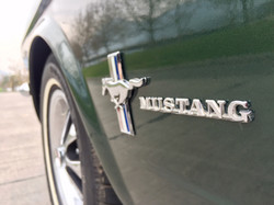 Ford Mustang (10)