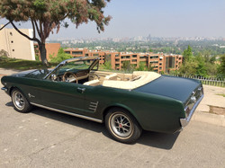 Ford Mustang (156)