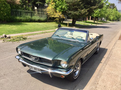 Ford Mustang (164)