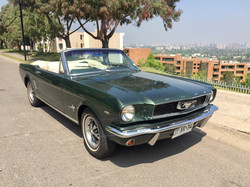 Ford Mustang (169)