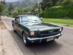 Ford Mustang (98)
