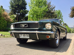 Ford Mustang (162)
