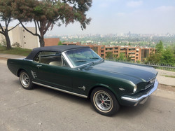 Ford Mustang (67)