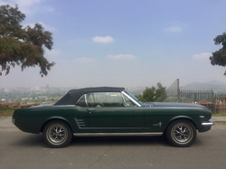 Ford Mustang (69)