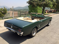 Ford Mustang (177)